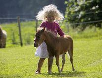 Cel mai mic cal din lume e cât un câine: Te topeşti de dragul lui!