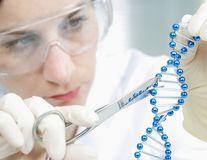 Cercetătorii au codificat un GIF în ADN-ul unei bacterii