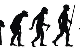 Dacă oamenii se trag din maimuțe, de ce mai există acestea?