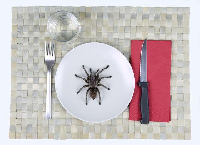 păianjen