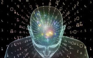 Oamenii de știință au legat un creier de Internet pentru prima dată