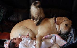 Și-au lăsat bebelușul singur timp de un minut. Iată ce au găsit când s-au întors!