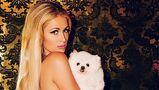"""Paris Hilton îşi ţine câinii într-o """"cuşcă"""" de lux: o vilă în stil spaniol!"""