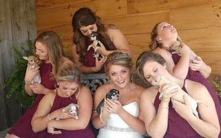 Cea mai neobişnuită nuntă: Au folosit căţeluşi în loc de buchete de flori!