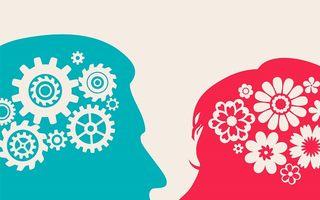 Cât de diferit este creierul femeilor de cel al bărbaților?