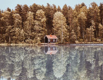 Cele mai frumoase imagini care surprind toamna în diferite colţuri ale lumii