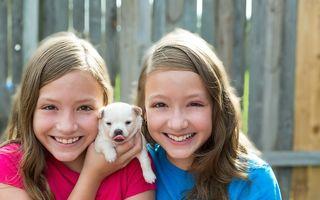 Câinii pot proteja copiii împotriva eczemelor și astmului. Iată ce spun specialiștii