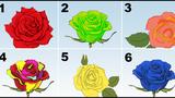 Test. Alege trandafirul care te reprezintă și află ce spune despre personalitatea ta