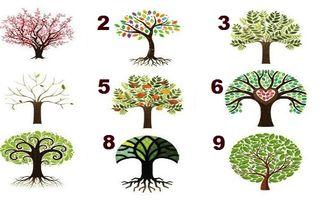 Test. Alege copacul care te reprezintă și află ce spune despre personalitatea ta