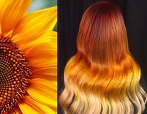 Păr vopsit în nuanţe inspirate de natură. Creaţiile uimitoare ale unui hairstilist