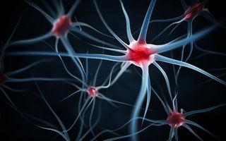 Neuroștiința a ajuns la aceeași concluzie ca budismul: nu există un sine constant