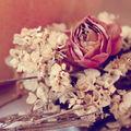 De ce nu este bine să păstrezi flori uscate în casă