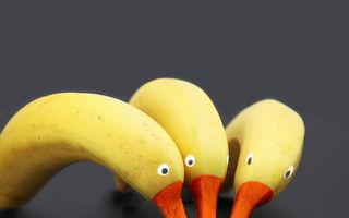 Poveştile din farfurie: Când mâncarea se transformă în ceva amuzant