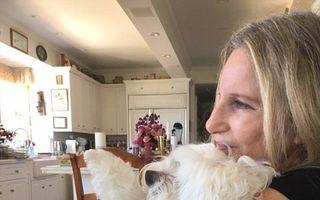 Barbra Streisand şi-a clonat de două ori câinele