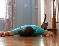 S-a prefăcut că a murit ca să vadă ce face pisica: Reacţia ei e magistrală - VIDEO