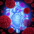 Studiu. O nouă descoperire medicală ar putea explica răspândirea cancerului
