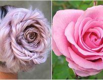O coafură așa cum nu ai mai văzut: Cocul trandafir arată spectaculos!