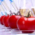 13 substanțe periculoase care se găsesc în alimente. Cum să le eviți