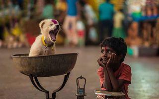 Cei mai buni prieteni: 25 de imagini care surprind legătura specială dintre animale şi copii
