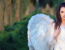 Cine sunt îngerii întrupați?
