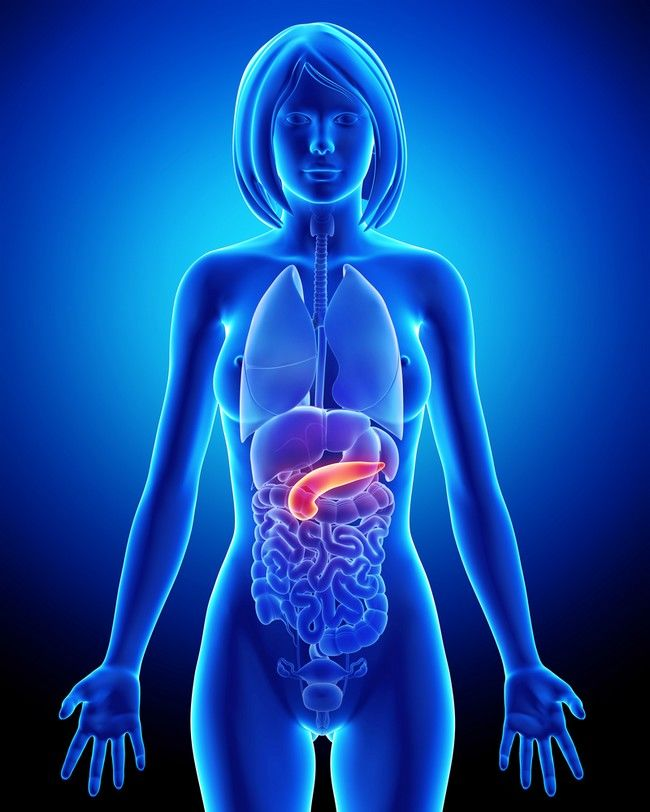 pancreas diéta