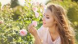 8 plante din grădină care te scapă de țânțari