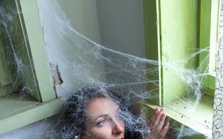 De ce nu ar trebui să omori niciodată un păianjen în casă