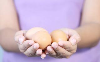 Medicamentele de cancer crescute în ouă de găină s-ar putea ieftini