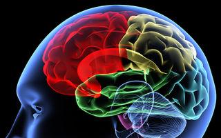 De ce caută mereu probleme creierul