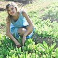 26 de plante care cresc cel mai bine împreună