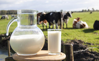 Studiu: Laptele bogat în grăsimi te poate proteja împotriva accidentului vascular cerebral
