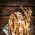 Pâine veche de 14.500 de ani. Unde a fost descoperită