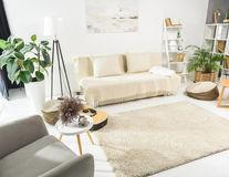4 plante de interior care nu au nevoie de multă lumină
