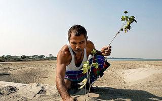 A plantat 40 de ani câte un copac în fiecare zi pe o insulă pustie. Acum locul e de nerecunoscut