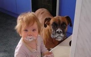 Copiii şi animalele sunt pe aceeaşi lungime de undă ... la năzbâtii! 16 imagini de tot râsul
