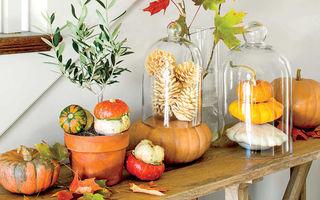 40 de aranjamente pentru toamnă care îți fac casa mai frumoasă