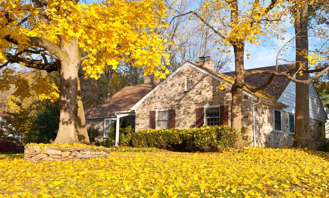8 lucruri pe care trebuie să le faci în casă și curte în fiecare toamnă