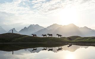Cum vede lumea un fotograf care colindă hai-hui: Ce imagini!