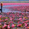 22 de imagini superbe în care natura ne arată tot ce are mai bun