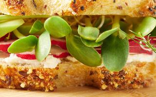 Fobia de sandvișuri. Ce este și de ce apare