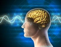IQ-ul oamenilor din întreaga lume scade, iar oamenii de știință nu știu de ce