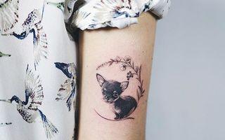 20 de tatuaje pentru iubitorii de animale. Sunt geniale!