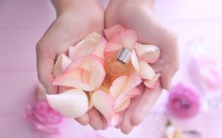 Cum să-ți faci un difuzor de parfum pentru casă folosind uleiuri esențiale