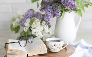 7 trucuri pentru ca locuința ta să miroasă întotdeauna bine