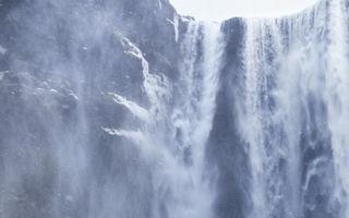 Imagini desprinse din legende! Caii sălbatici ai Islandei cutreieră nămeții