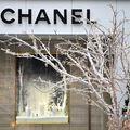 Chanel renunță la blana și pielea de animale exotice