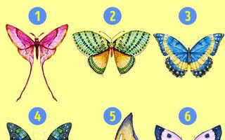 Alege un fluture şi descoperă latura ascunsă a personalităţii tale
