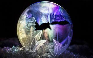 Magia iernii: Ce nu vedem într-un balon de săpun înghețat - FOTO