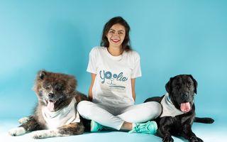 Psihologia canină. O metodă sigură de a educa noul câine sau chiar și un câine adult