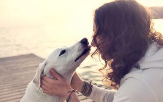 Ce lecție spirituală poți învăța de la câinele tău